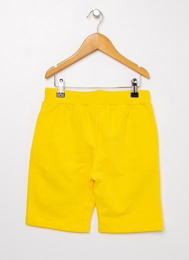 Limon Company Limon Sarı Şort Sarı